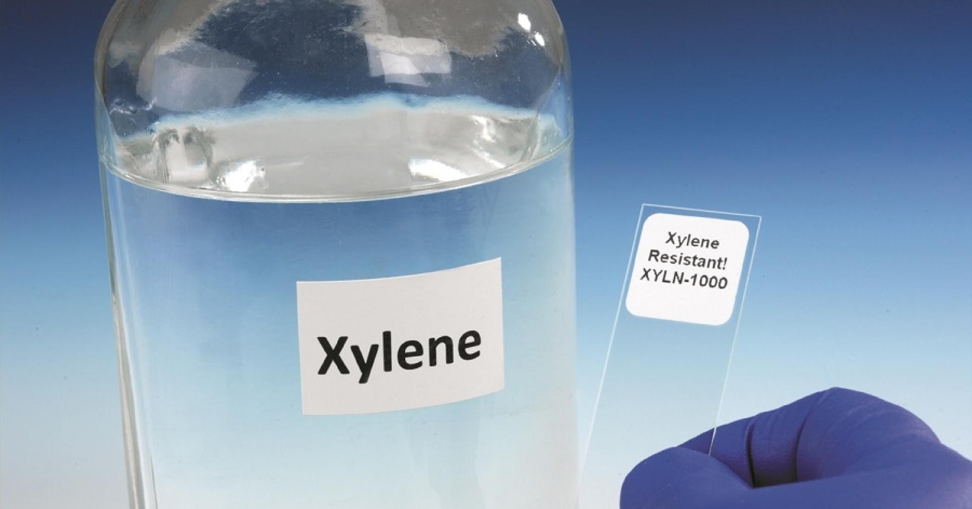 Hóa chất Xylene và những gì chúng ta cần biết